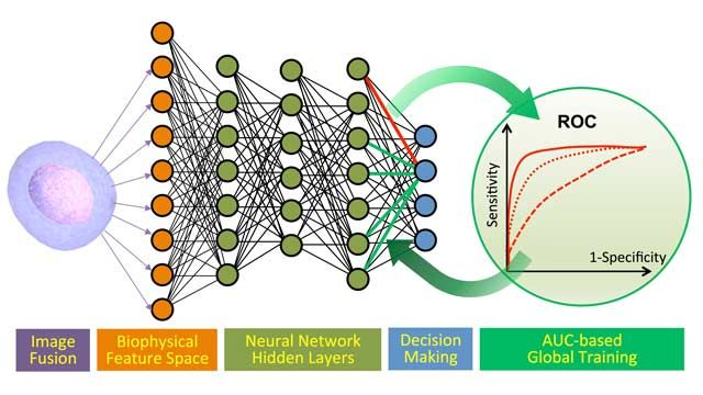 Cancer Diagnostics with Deep Learning and Photonic Time Stretch