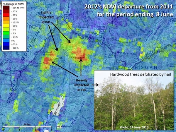 U S Forest Change Assessment Viewer Map Showing Damage To The Asheville North Carolina Watershed Following