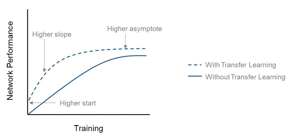 Comparing the network performance (accuracy) of training from scratch and transfer learning.