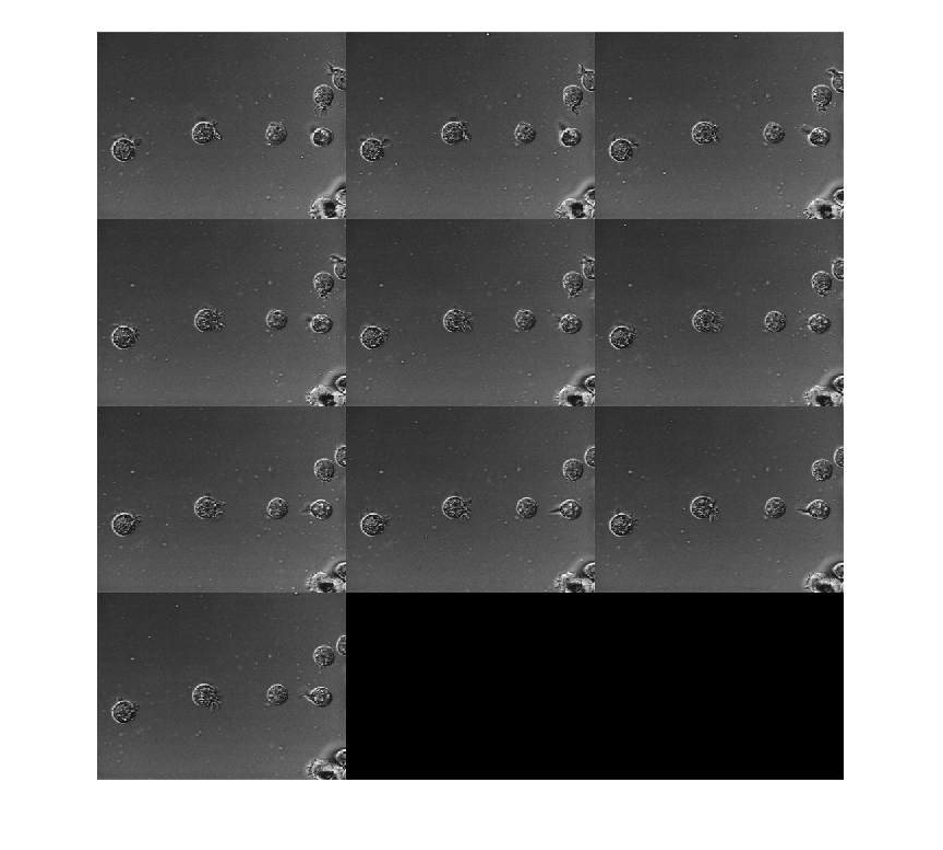 Display multiple image frames as rectangular montage - MATLAB montage