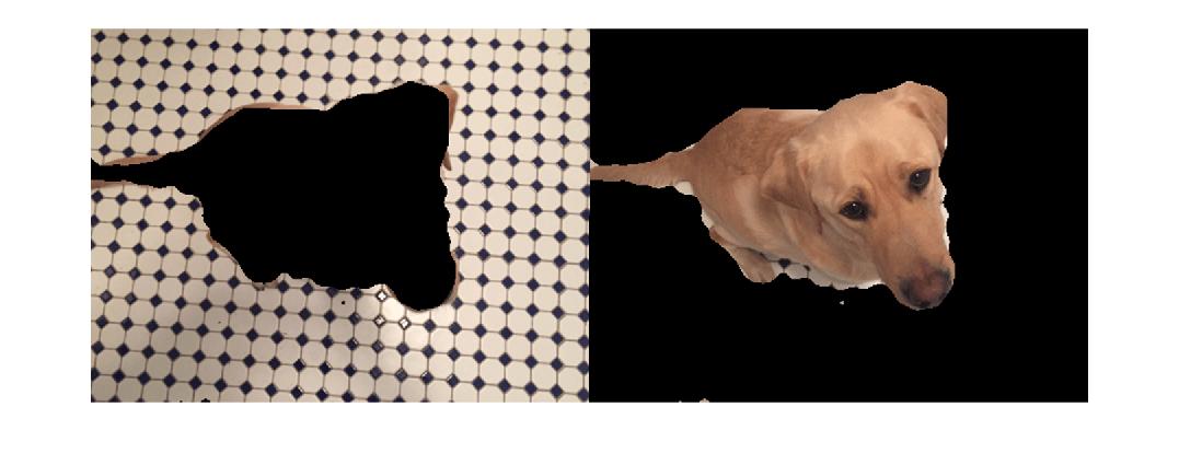 Image Segmentation - MATLAB & Simulink