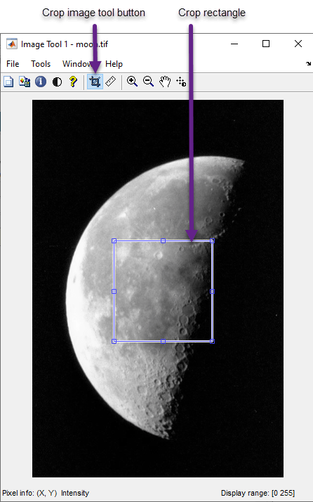 Crop Image Using Image Viewer App - MATLAB & Simulink
