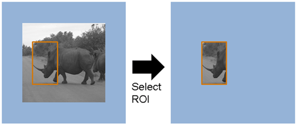 Select A Region Of Interest Roi From Pixel Stream Simulink