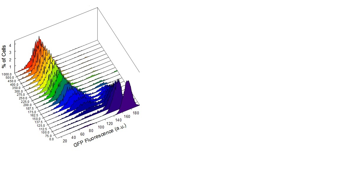 arrange multiple 2D histograms in 3D - MATLAB Answers - MATLAB Central