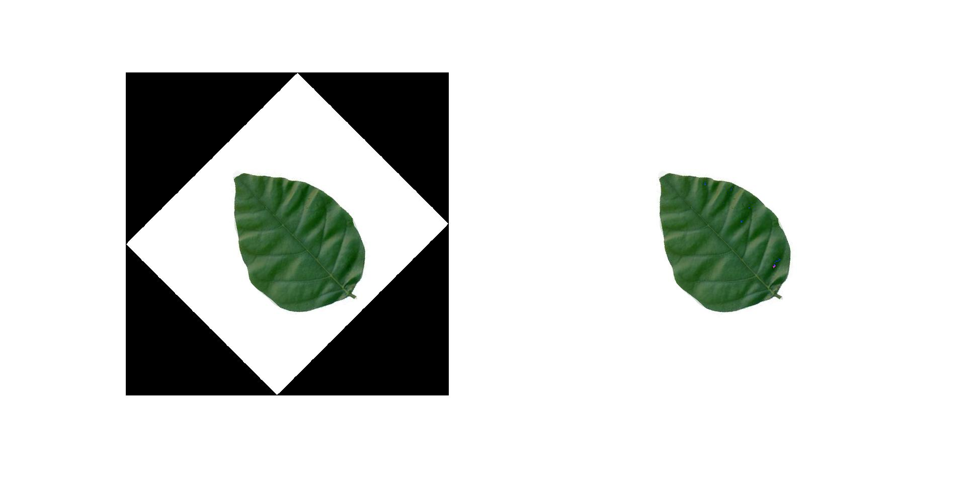 Rotate Image Segment Without Background Matlab Answers