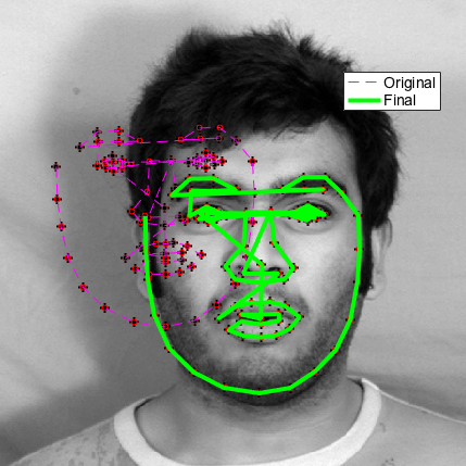 Face detection with Active Shape Models (ASMs) - File Exchange