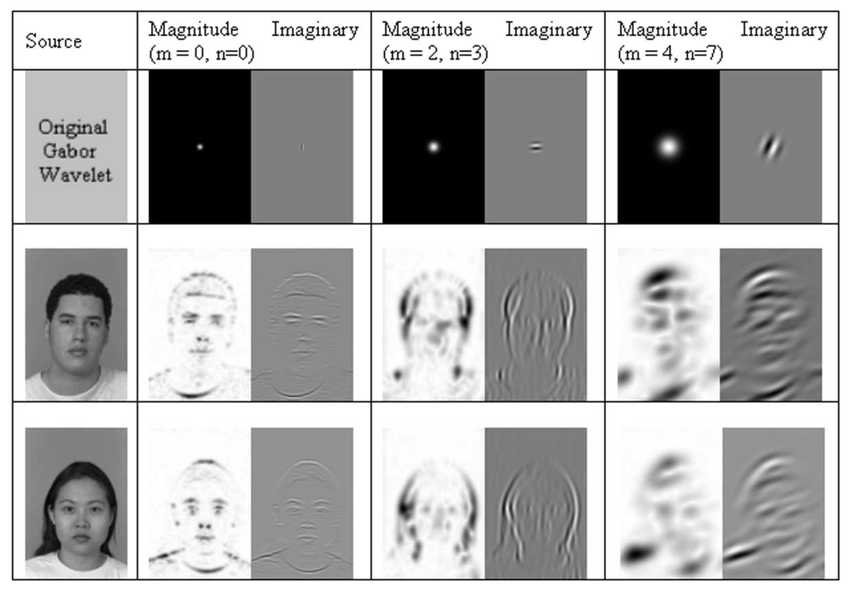 Face Recognition Project based on Wavelet and Neural Network - File