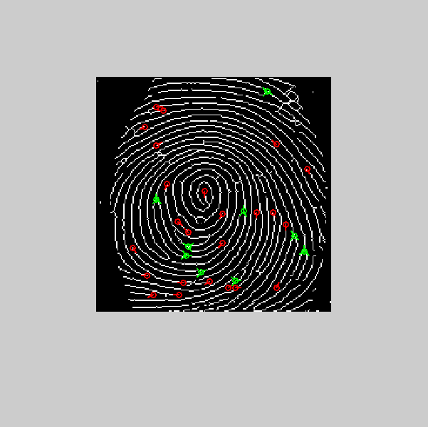 Fingerprint_11