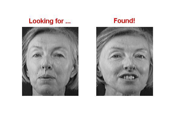 Face Recognition - File Exchange - MATLAB Central