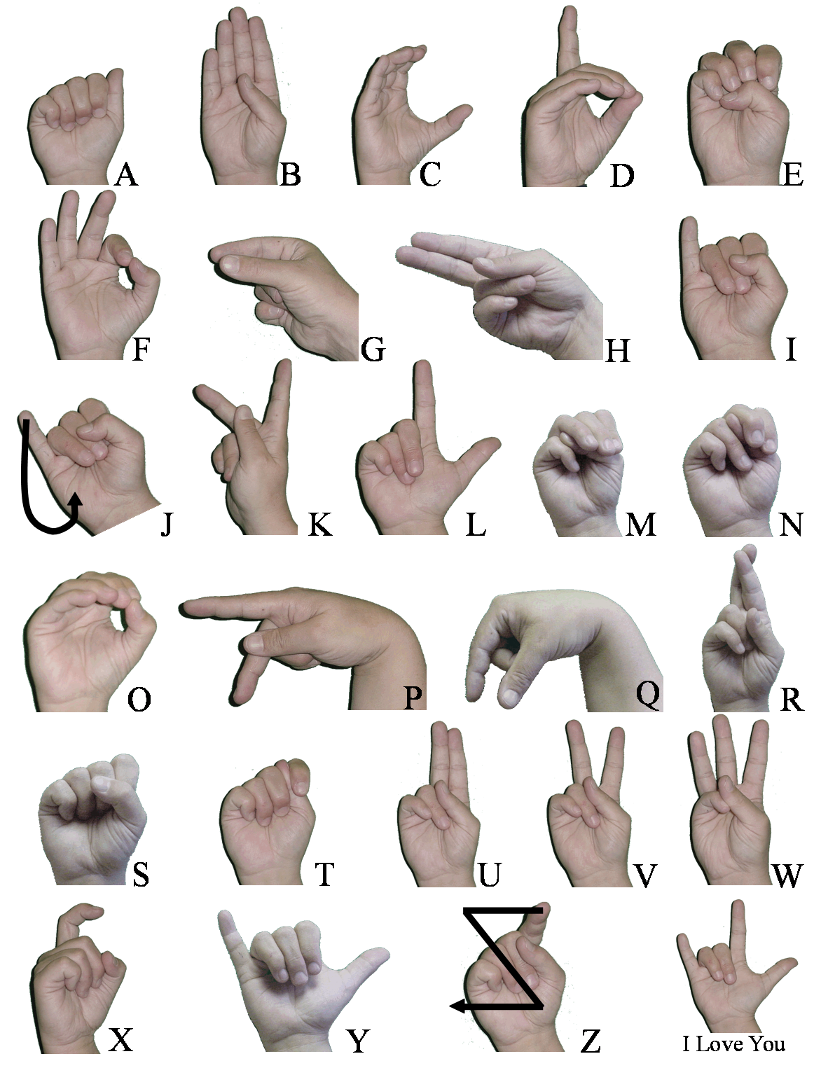 American sign language detection using pca and lda file exchange image thumbnail biocorpaavc Image collections