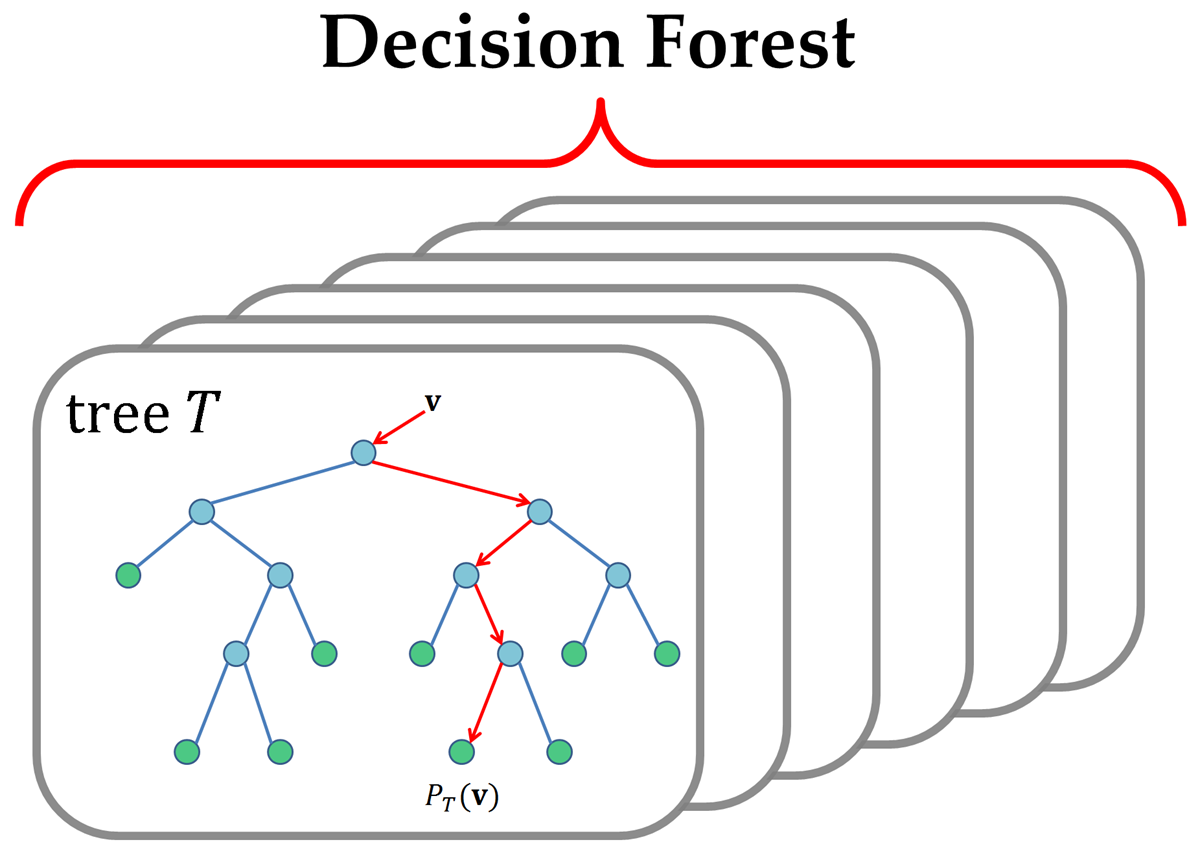 Decision Tree and Decision Forest - File Exchange - MATLAB