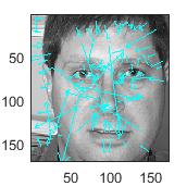 Face Recognition Algorithm using SIFT features - File Exchange